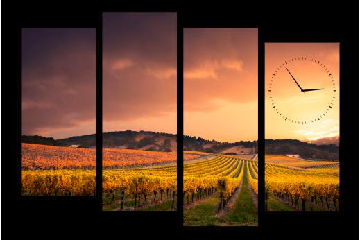 Модульная картина с часами Виноградное поле